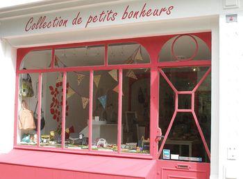 Collection_petits_bonheurs